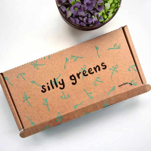 silly greens box presentation