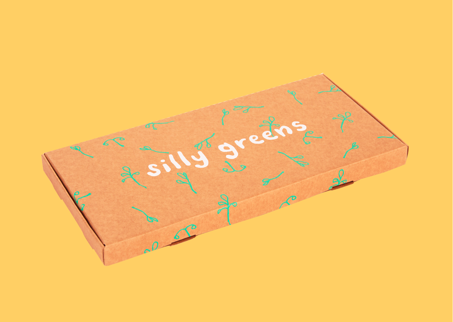 Silly Greens cardboard letterbox grow your own herbs box